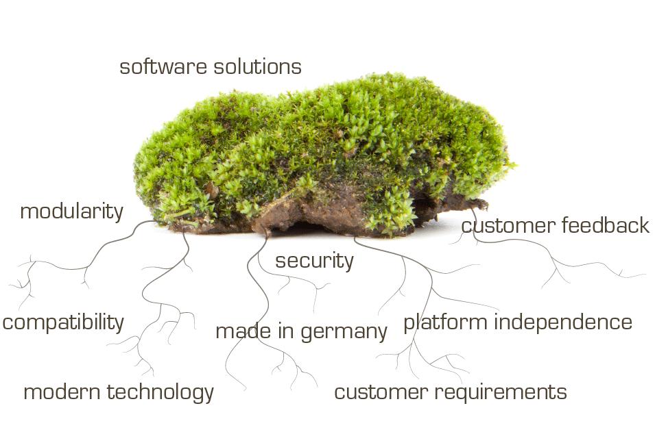 SSC-Services_Infografik_Entwicklung_EN