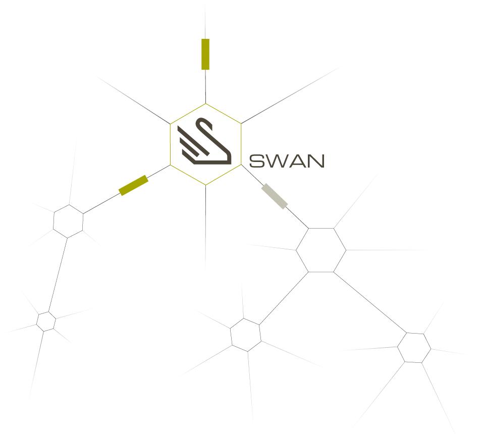 SSC-Services_Infografik_SWAN