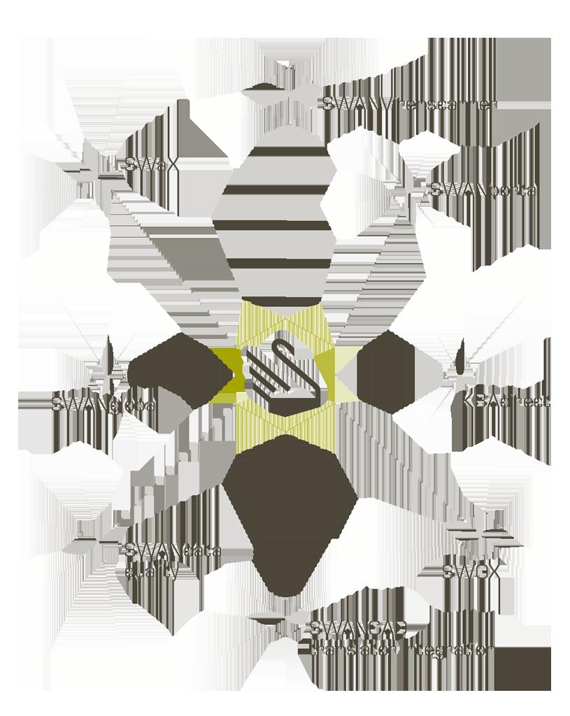 SSC-Services_Infografik_SWAN-Module